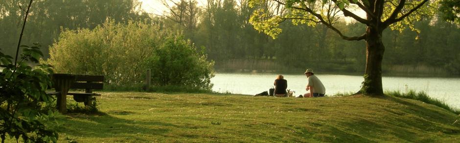Recreërende mensen aan het water, tussen een boom en een picknicktafel.