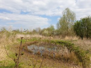 excursie in Foodforest Ketelbroek
