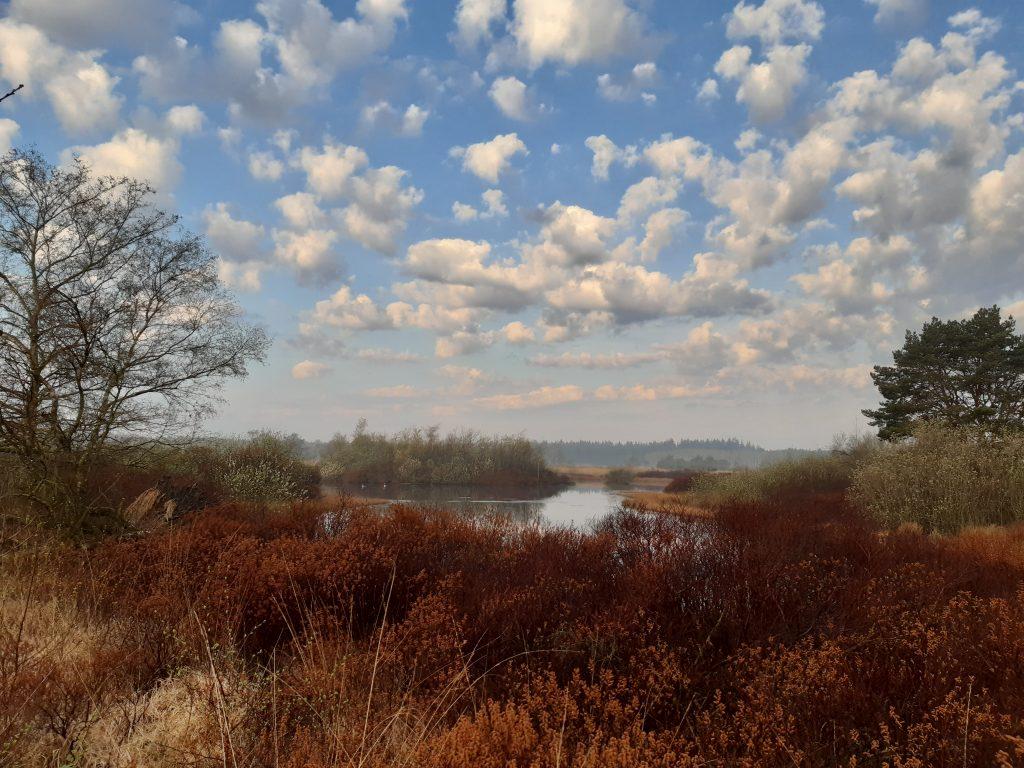 Fotowedstrijd Landschapskunst - Mirella Vosters - NB